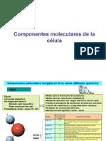 Biomoleculas_Membrana_Plasmatica.ppt