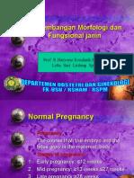 K - 13 Perkembangan Morfologi Dan Fungsional Janin (Obgyn)