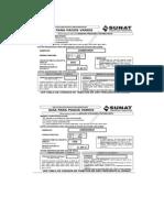 Guias de PAgos Varios.pdf