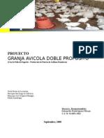 PROYECTO Cria y Engorde de Pollos y Gallinas Ponedoras.doc Final