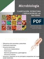 1 Estructura y Clasificación de Bacterias