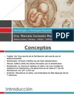 Morfologia y Fisiologia Placentaria - Clase (1)