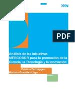 Análisis-de-las-iniciativas-MERCOSUR-para-la-promoción-de-la-Ciencia-la-Tecnología-y-la-Innovación_007.doc