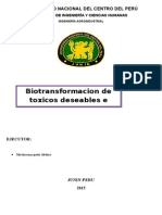 Bio Transformaci On