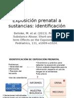 Identificación de exposición prenatal a sustancias