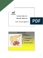 13 Pancreas Endocrino