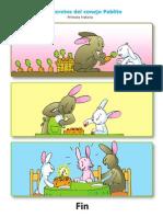 Primera Historcia Conejo Pablito