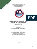 Informe Final - Ntjv