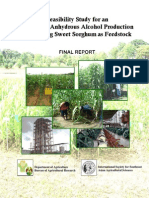 Feasibility Study of Sweet Sorghum