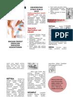 45667323-leaflet-SADARI.doc
