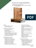 Programa del curso de masaje metamerico CITABE.pdf