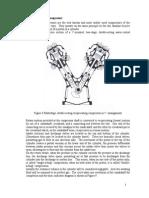 Reciprocating Compressors[PDF]