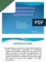 2c -Homeostasis de La Absorcion de Los Carbohidratos