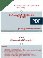 3 Diagnosticul financiar.ppt