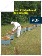 Efficient Production of Bee Colonies (Thorsen)