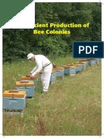Efficient Production of Bee Colonies (Thorsen)