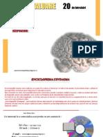 Enciclopedie-Anatomia-Omului.pdf