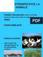 relatiiinterspecificelaanimale-110331112005-phpapp01