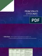 Principales Citocinas
