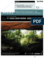 12_Paso_Centurion_baja.pdf