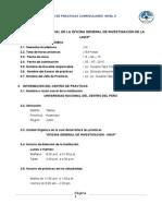 Plan Estrategico Practicas II - Final 2015