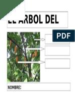 ARBOL DEL CHOCOLATE.doc