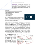 03 TEXTO Peixes Cyclostomata e Chondrichthyes