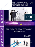 CLASE 1 PERFILES.ppt