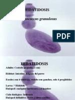 hidatidosis(1).ppt
