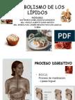 Guu00EDa Metabolismo de Lu00EDpidos-I 2014