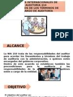 Presentación1 NIA 210
