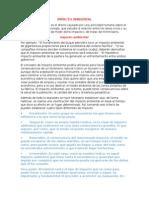 Definicion IMPACTO AMBIENTAL y Actividades