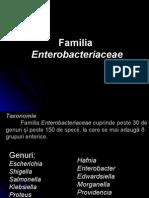 Enterobacteriace