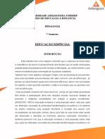 265067035 Atps Educacao Especial