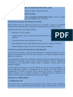 Manual de Derecho Procesal Civil Resumen