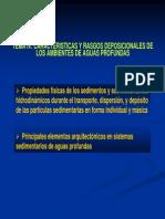 04 Tema IV. Caracteristicas y Rasgos Deposicionales de Los Ambientes de Aguas Profundas_bh