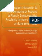 20111115_TerapiaOcupacional_COSAMQuintaNormal
