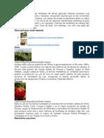 Más de 25 Millones de Hectáreas de Tierras Agrícolas Italianas Producen Una Amplia Variedad de Frutas y Verduras