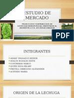 ESTUDIO-DE-MERCADO-proyecto-hidroponico (2).pptx