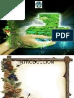 PROGRAMA DE EDUCACION medio ambiente.pptx