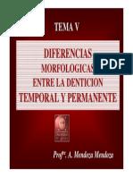 diferencia entre temporales y permanentes.pdf