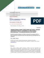 Transformax Fam Chile