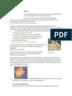 Idetificacion y Clasificacion de Estructuras