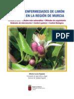 1193-Texto Completo 1 Plagas y enfermedades de limón y  pomelo en la Región de Murcia.pdf (1).pdf