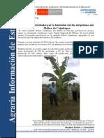 Nota de prensa  Información Agraria N°05.1