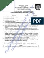 Prueba interna de admisión -  FACES UC 2013