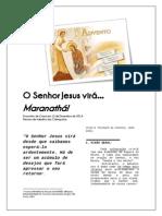 Advento - Vem Senhor!.pdf
