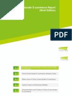 8. 2014 China Cross Border E Commerce Report Brief Edition
