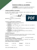 Introduccion Al Algebrarosa Ara