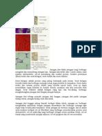 sosialisasi dan pembentukan kepribadian pdf download